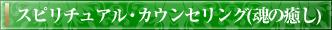 スピリチュアル・カウンセリング(魂の癒し)