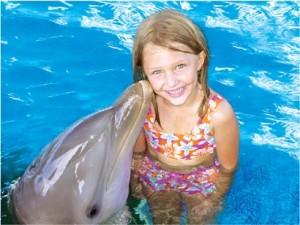 dolphin04