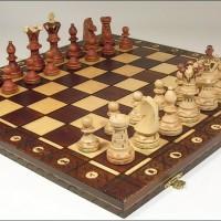 蠍座の満月にチェスを始めました