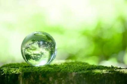 森林と地球儀