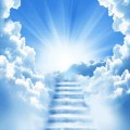 天使からの言葉 NO.81