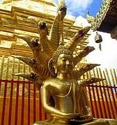 仏陀を守る竜王